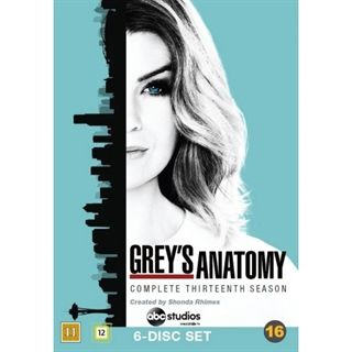 Greys Hvide Verden - Season 13