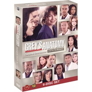 Greys Hvide Verden - Season 10